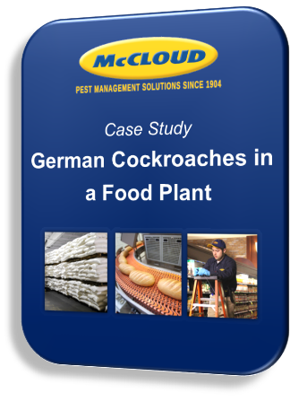 German Cockroaches in a Food Plant