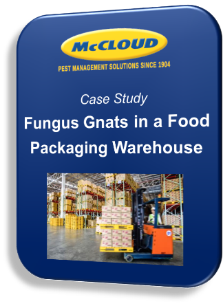 Case Study: Fungus Gnats in a Food Packaging Warehouse