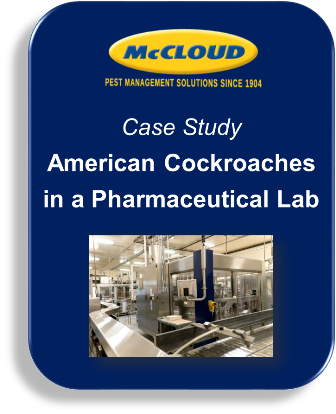 Case Study: American Cockroaches in a Pharmaceutical Lab